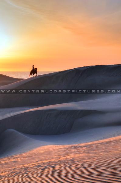 horse-dunes_8046