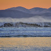 waves 8630