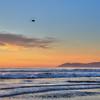 oceano heron sunset 6469