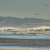 waves 8555
