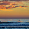 oceano sunset 6562