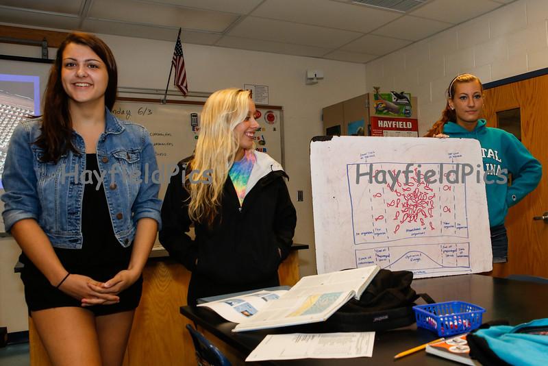 Hayfield-5401