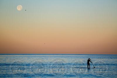 Paddle Boarder La Jolla Shores, Ca