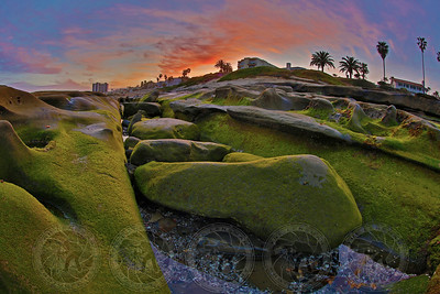 Sunrise on the Tide Pools La Jolla, CA