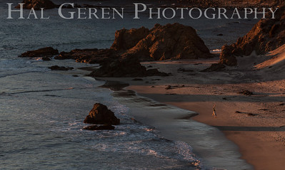 Cartwheels on Pfeiffer Beach Big Sur, California 1312BS-PB2