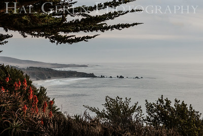 Rocky Point  Big Sur, California 1401BS-RP13