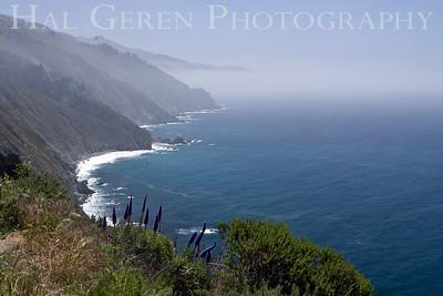 Big Sur Coast Big Sur, California 1005BS-C7
