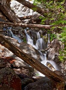 Stream Point Lobos, California 1005BS-FH1