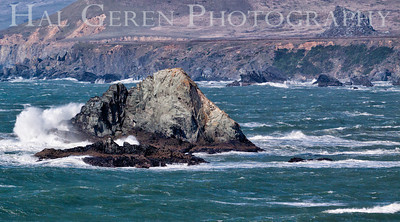 201202 Bodega Bay - Duncans Landing 4