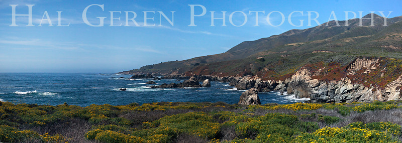Garrapata Creek Headlands Big Sur, California 1206BS-GCP2
