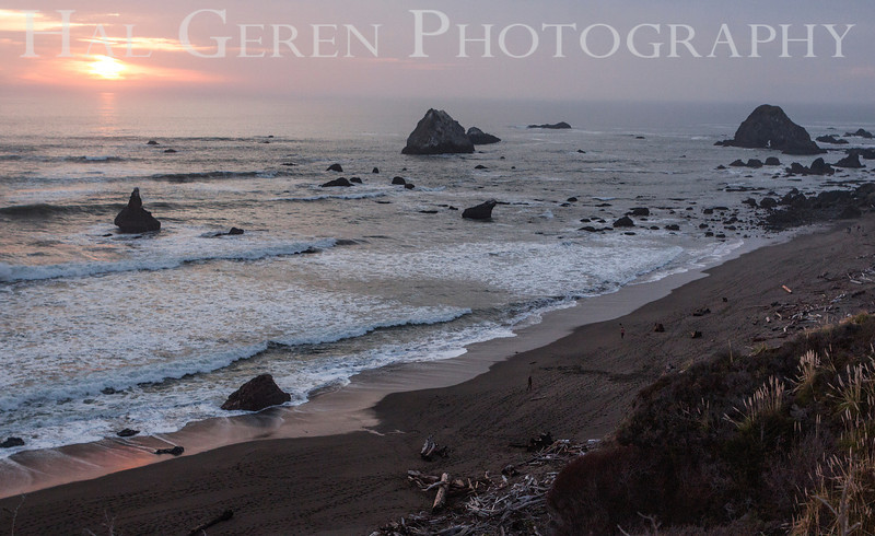Bodega Bay, California<br /> 1401BB-B7