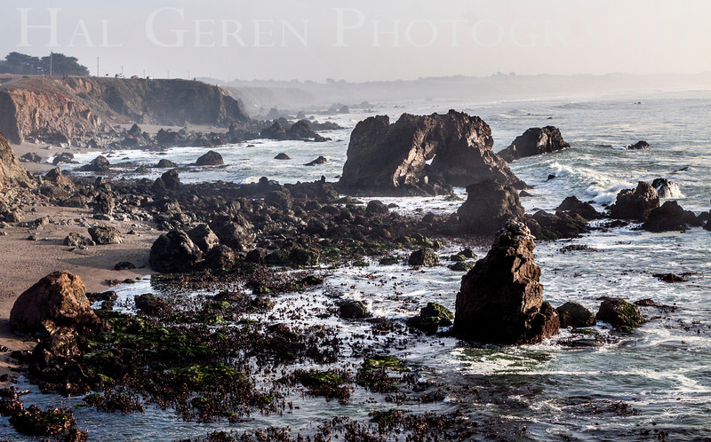 Bodega Bay, California<br /> 1401BB-V1