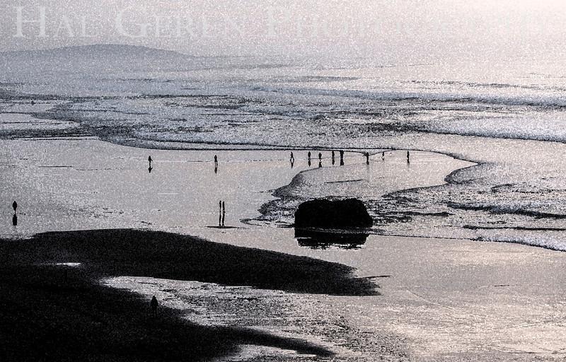 Bodega Bay, California<br /> 1401BB-B2E1
