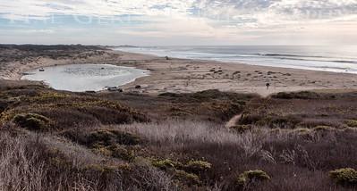 San Gregorio Beach San Gregorio, California 1401M-V2