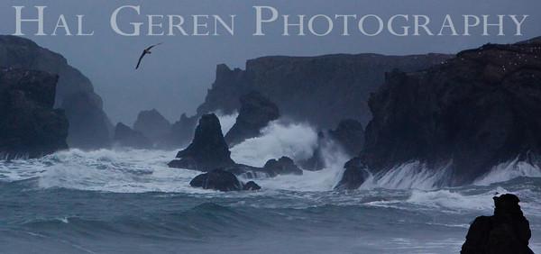 Duncan's Landing Bodega Bay, California 0912O-DL1