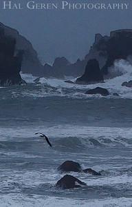 Duncan's Landing Bodega Bay, California 0912O-DL2E1