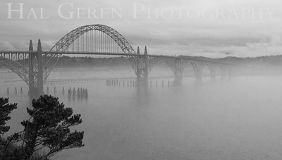 Yaquina Bay Bridge Newport, Oregon 0912O-YBB2BW