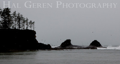 Rivers Mouth Oregon Coast 0912O-RM1