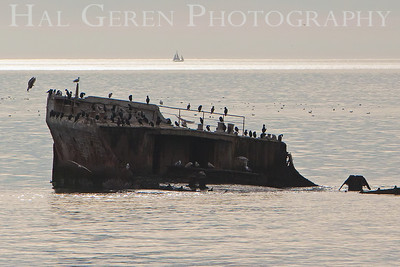 SS Palo Alto  Seacliff State Beach, California 0902S-SSPA5