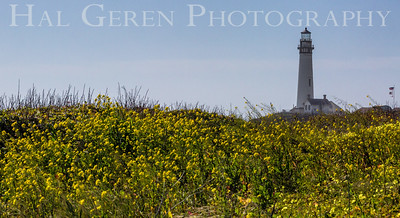 Pigeon Point Lighthouse Davenport, California 1504FB-PPL1