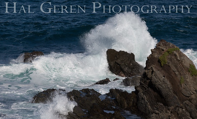 Fort Bragg, California 1701FB-WB2