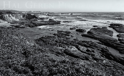 Point Arena Headlands, California 1504FB-PB4BW1