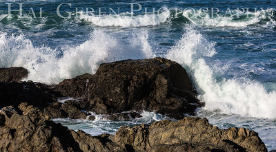 Fort Bragg, California 1701FB-SB1
