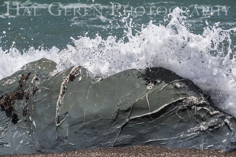 Goat Rock, California<br /> 1606FR-RAB1
