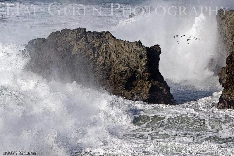 Duncan's Landing<br /> Bodega Bay, California<br /> 0801BB-GAW7E1