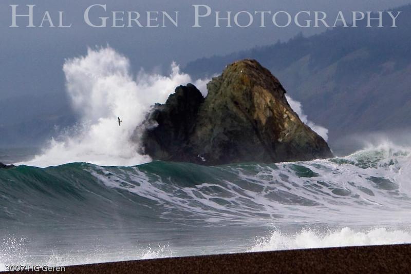 Duncans Landing<br /> Bodega Bay, California<br /> 0801BB-WOR1