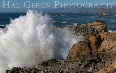 Duncans Landing Wave Blast Bodega Bay, California 1501C-DL1WB