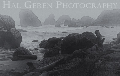 Lost Beach on a Stormy Day Brookings, Oregon 1112NC-LB1BW1