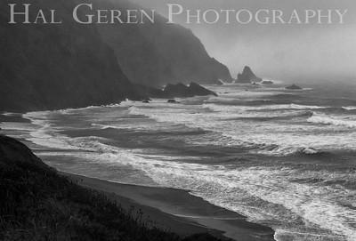 Southern Oregon Coastline 1112NC-V2BW1