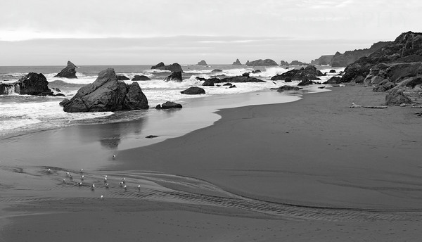 Harris Beach Brookings, Oregon 1112NC-HB9BW