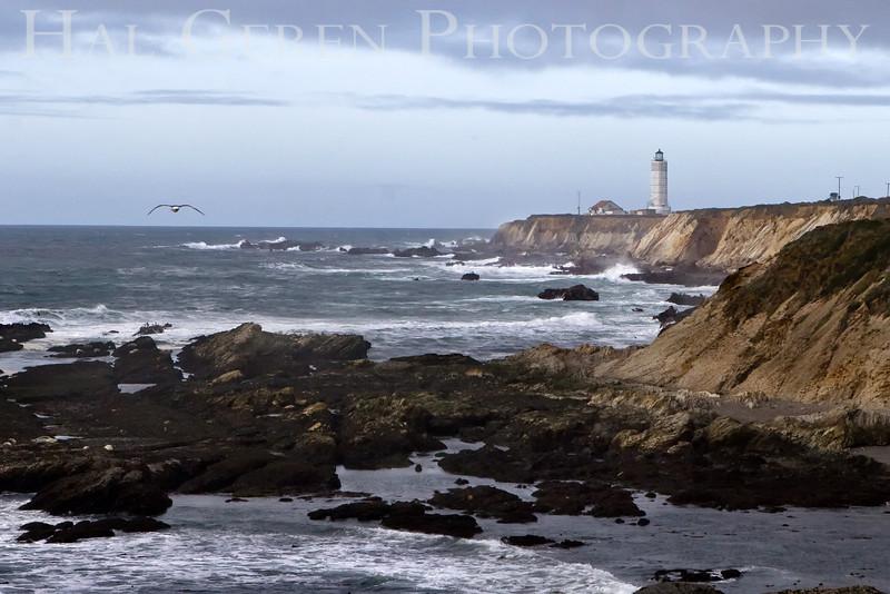 Point Arena Lighthouse 5<br /> November, 2008<br /> 0811NC-PAL5