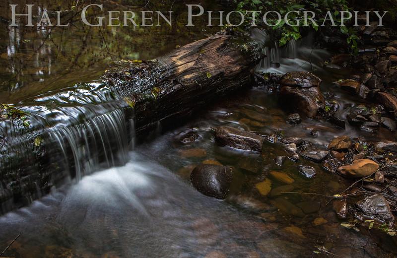 Gazos Creek<br /> 1306PP-S5