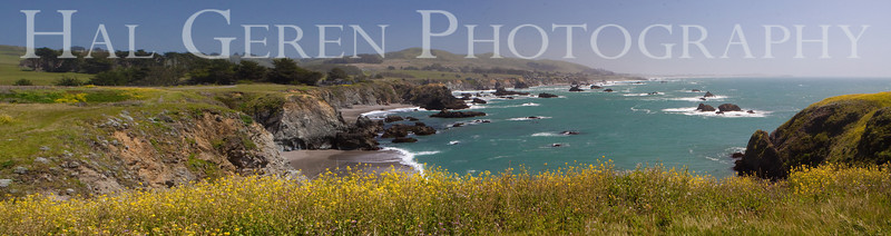 Duncan's Cove  Bodega Bay, California 1004PA-DCP1