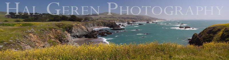 Duncan's Cove  Bodega Bay, California 1004PA-DCP1