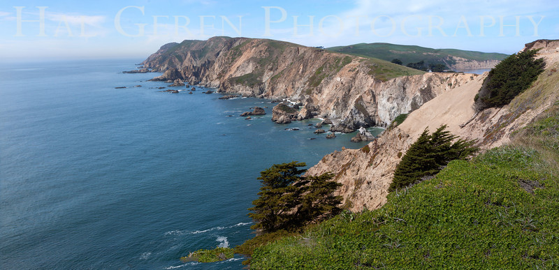 Point Reyes, California<br /> 1303PR-P4