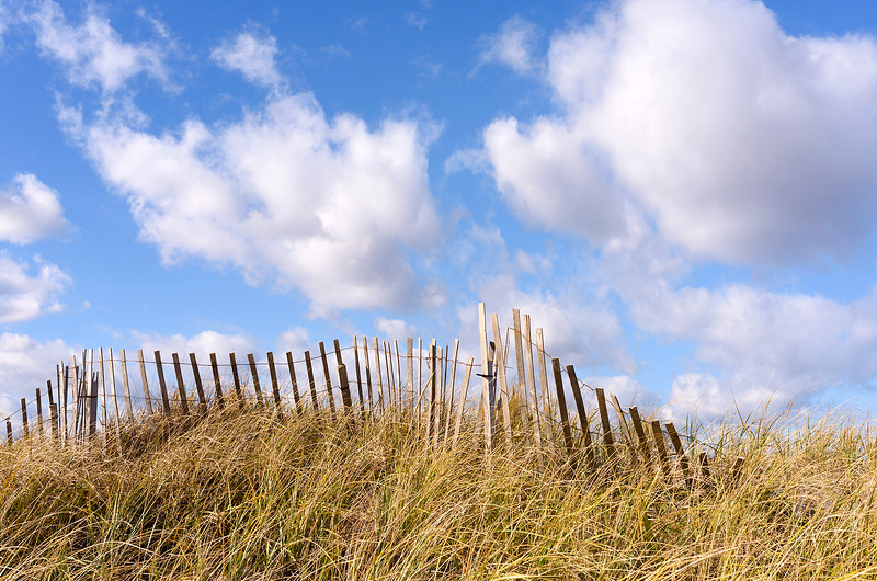 Dune Fencing and Clouds