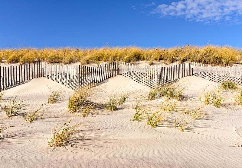 Fences, Beach Grass And Sky