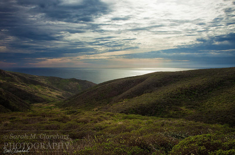 Point Reyes March 1
