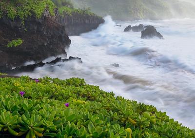 Haleakala National Park, HI