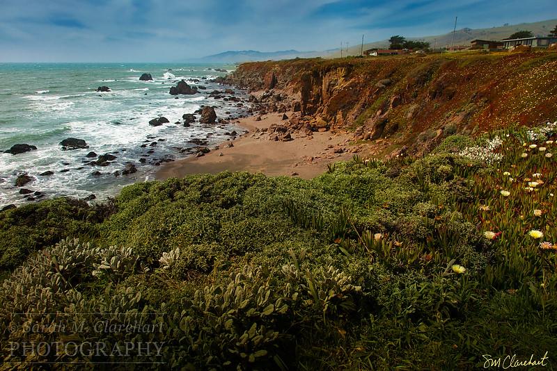 Sonoma Coast 1