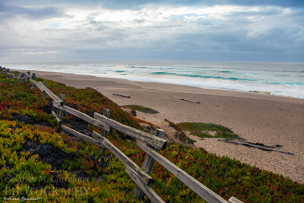 North Beach Point Reyes