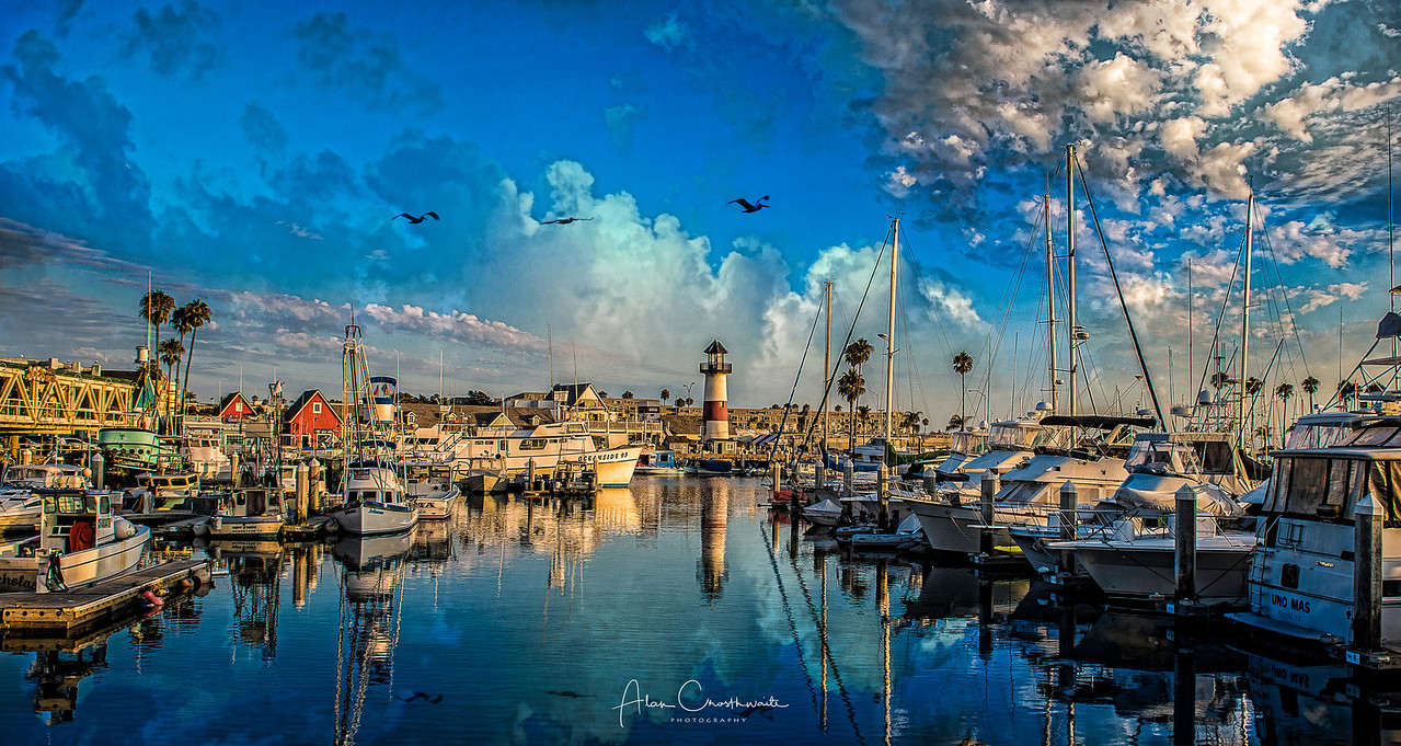 """Colorful Harbor Reflections"""