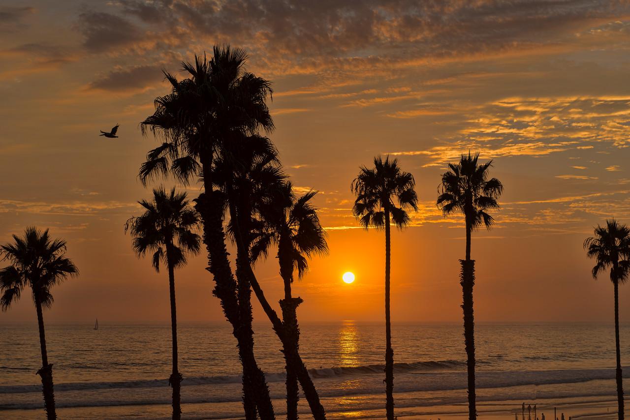 Tropical Sunset #79