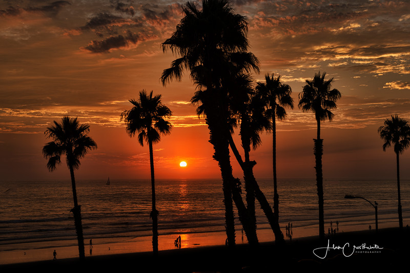 Orange sunset in Oceanside #82