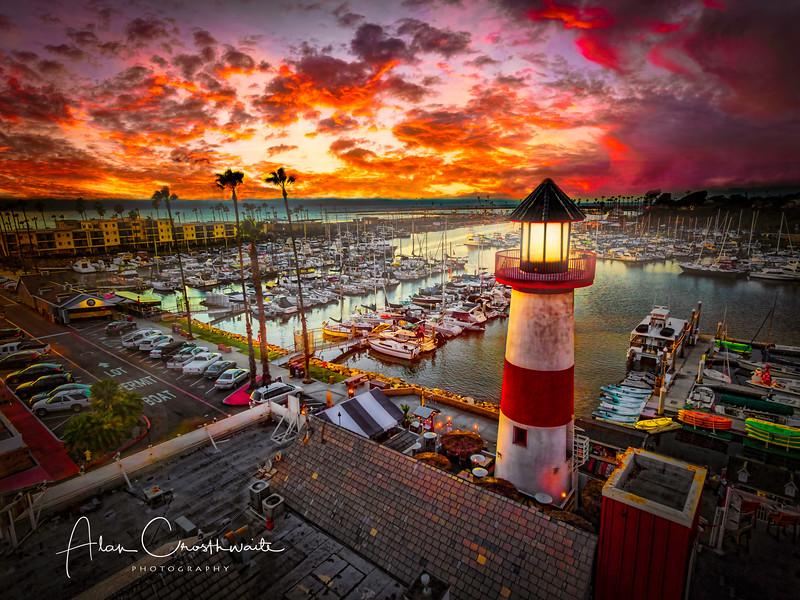 Harbor Lite