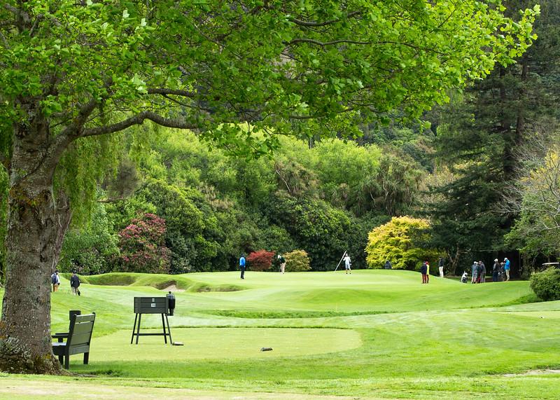 Images captured during the 2016 New Zealand Amateur Championship tournament held at Royal Wellington Golf Course, Heretaunga, Wellington New Zealand on 26 - 30 October 2016.  Copyright: John Mathews 2016,  Email: john.mathews@xtra.co.nz